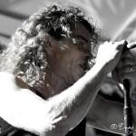 Concerts 25.1.2012